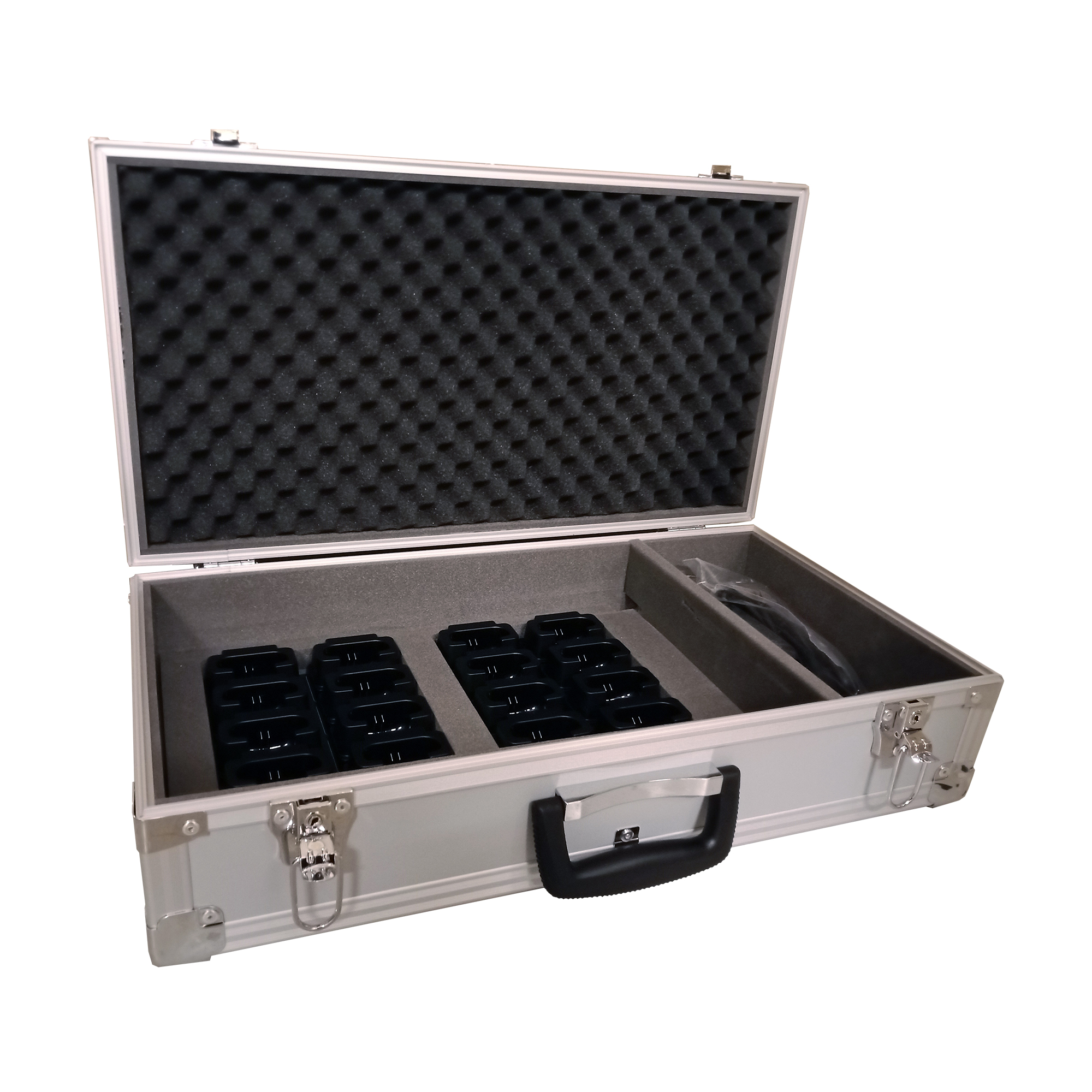 CB-20X Charging Case